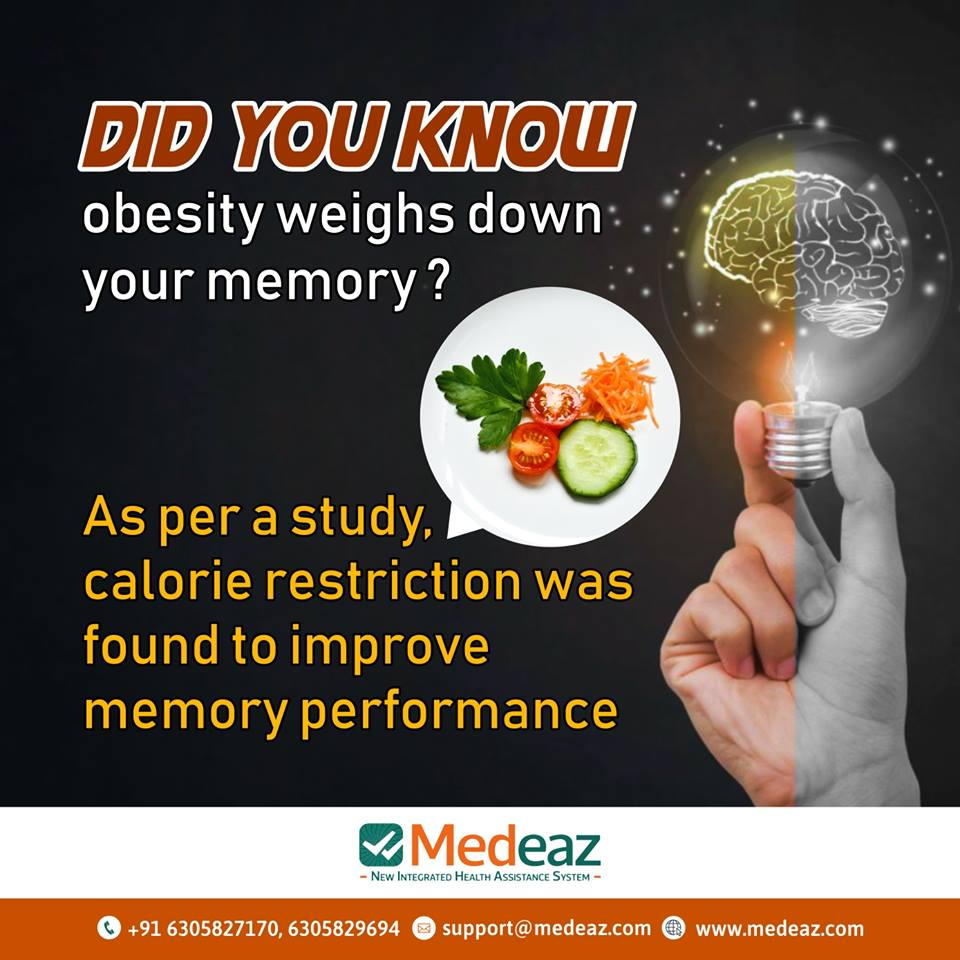 Obesity Weighs Down Your Memory?