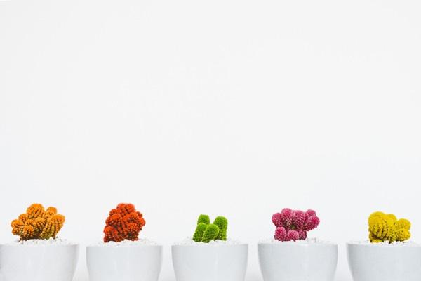 5 smarta tips på förvaring som sparar plats i 2021