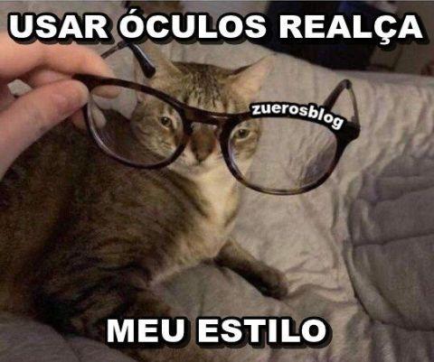 óculos no gato derp